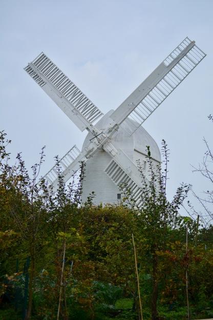 Windmills above Pyecome
